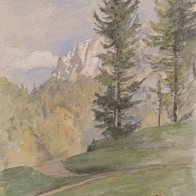 Horská krajina s ihličnatými stromami - Novopacký, Jan