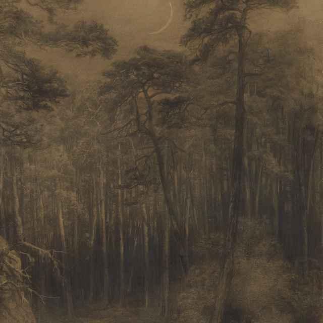 Borovicový les - Čordák, Ľudovít