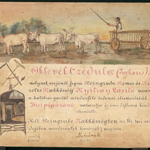 Valeta akademika Nyitraya Lászla, akvarel, 1900 - neznámy (osobné meno)