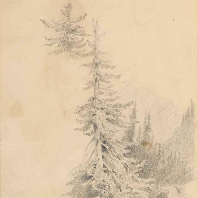 Horský motív s ihličnatým stromom v popredí - Scheidlin, Friedrich Carl von
