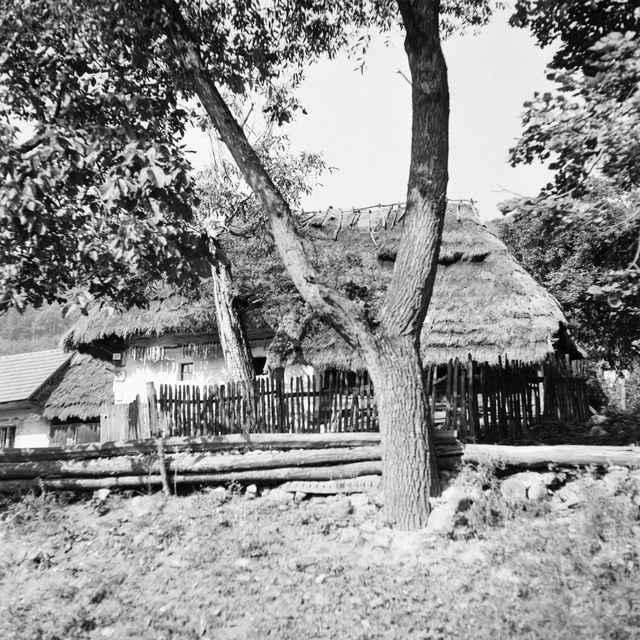 Obytný dom v Orovnici 002-01