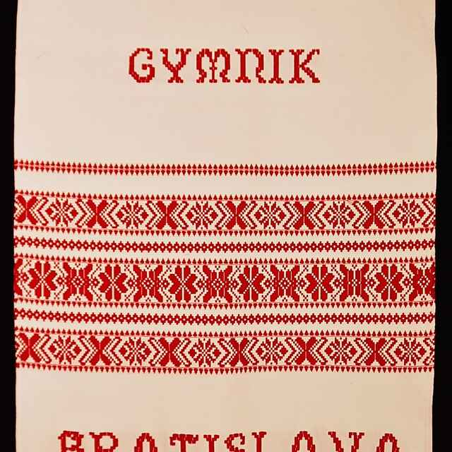 Ornamentník súboru Gymnik