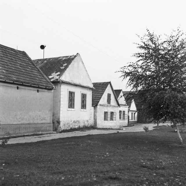 Obytné domy v Grinave