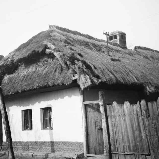 Obytný dom v obci Pata