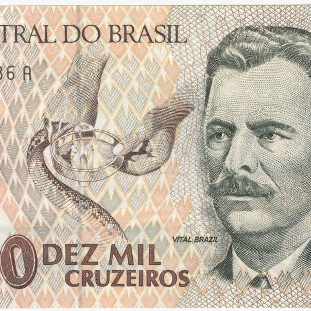 Bankovka 10 000 cruzeiros (fauna)