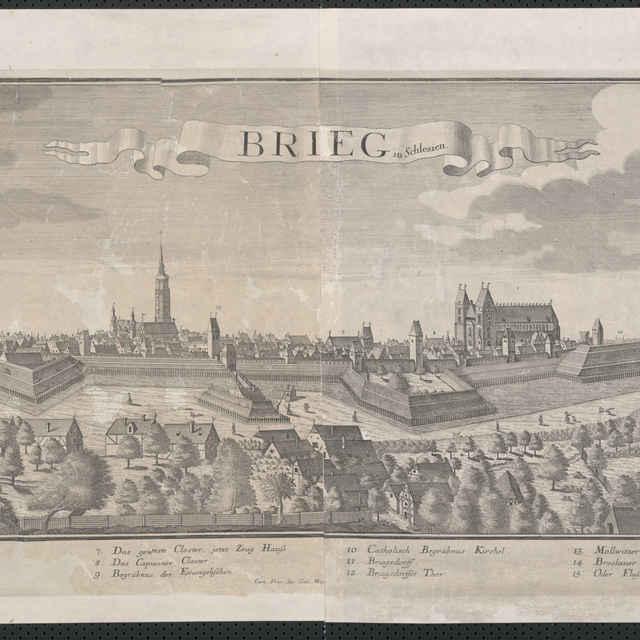 Obraz, Brieg in Schlesien. (Brzeg. Břeh), veduta, autori: Friedrich Bernhard Werner, Jeremias Wolff, grafika, r.1725-1760 - Wolff Jeremias