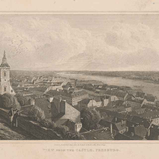 Bratislava v 19. storočí - pohľad z hradu - Acon, Robert