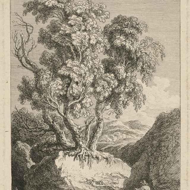 Starý strom - Weirotter, Franz Edmund