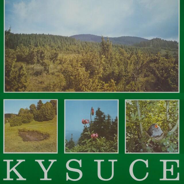 Kysuce - Jana Bučková